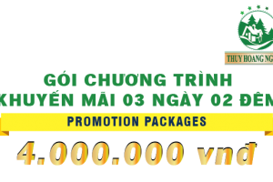 Promotion Package for 2